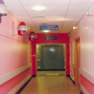 In the pink for children's ward