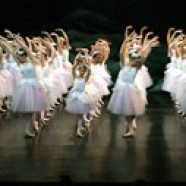 English Youth Ballet's Swan Lake comes to NNUH