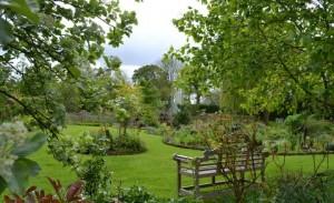 Furze garden